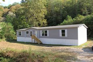 Residential Property for sale in 1158 Big Branch Road, Harts, WV, 25524