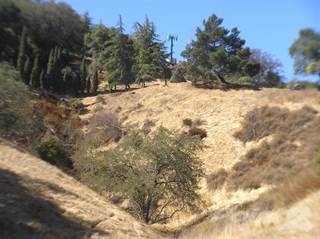Land for sale in 2200 Rolling Hills Dr , Morgan Hill, CA, 95037