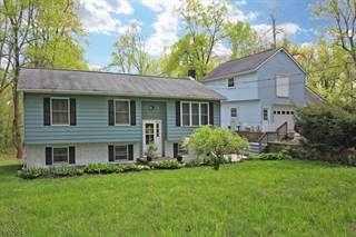 Single Family for sale in 20 Lower Ferry Road, Greater Stockton, NJ, 08822