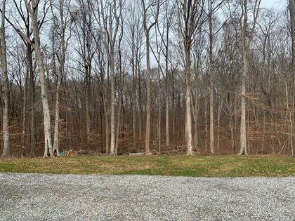 Lots And Land for sale in 25 Boaters Alley, Jabez, KY, 42544