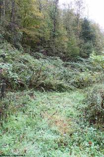 Lots And Land for sale in 2556 Erbacon Road, Cowen, WV, 26206