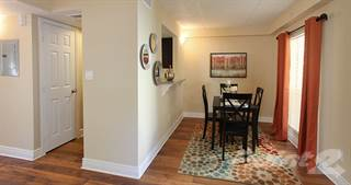 Apartment for rent in Promenade At Belleair Apartments - The Jasmine, Clearwater, FL, 33764