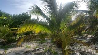 Residential Property for sale in San Jose KM 20, Mahahual, Quintana Roo