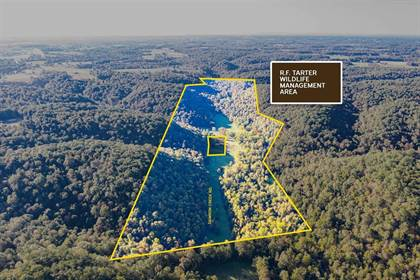 Farm And Agriculture for sale in 2707 Damron Creek Rd., Russell Springs, KY, 42642