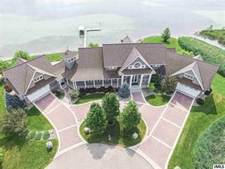 Single Family for sale in 462 FOX LAKE TRAIL, Horton, MI, 49246