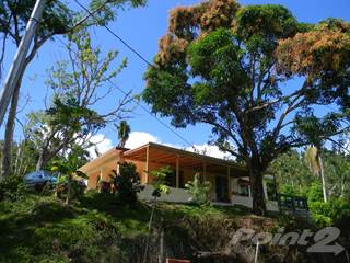 Residential Property for sale in Road 956 Interior, Rio Grande, PR, 00745