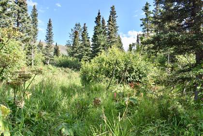 Lots And Land for sale in L4 B6V Rabbit Creek Road, Anchorage, AK, 99516