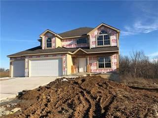 Single Family for sale in 8719 N SPRUCE Court, Kansas City, MO, 64156