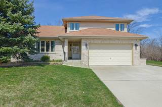 Single Family for sale in 14200 Creek Crossing Drive, Orland Park, IL, 60467