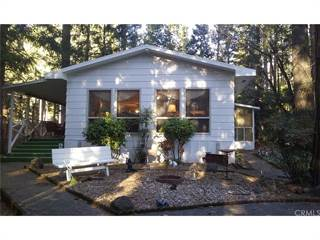 Single Family for sale in 6450 Callitris Court, Magalia, CA, 95954