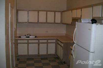 Apartment for rent in 1236 E. 46th Street, Chicago, IL, 60653