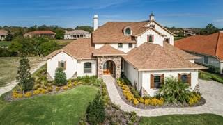 Single Family for sale in 874 SKYE LANE, Palm Harbor, FL, 34683