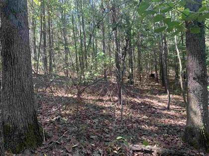 Lots And Land for sale in 000 LOYD IRBY RD, Pelahatchie, MS, 39145