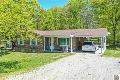 Residential Property for sale in 796 US Hwy 60 West, Smithland, KY, 42081