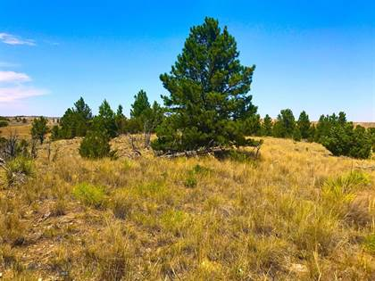 Lots And Land for sale in 24 E Sunshine, Roundup, MT, 59072
