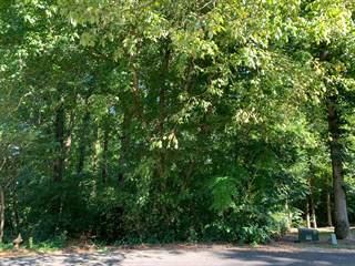 Land for sale in 207 Inata Trace, Loudon, TN, 37774