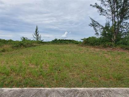 Residential Property for sale in 13 CARR 459 KM 2.1 INT., Camaceyes, PR, 00603