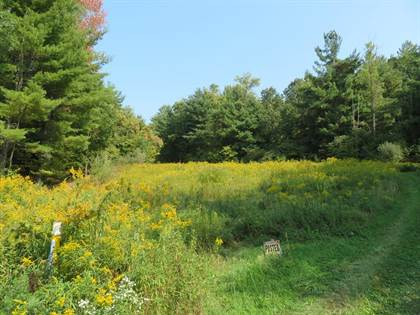 Lots And Land for sale in O-D Race Hill, Wyalusing, PA, 18853