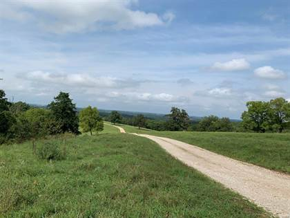 Farm And Agriculture for sale in 0 Hwy 133, 157 acres, Saint Thomas, MO, 65076