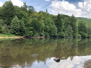 Farm And Agriculture for sale in 0 Corridor H Road, Belington, WV, 26250