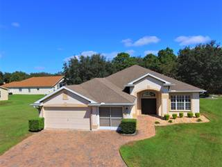 Single Family for sale in 362 Keltner Court, Spring Hill, FL, 34609