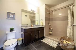 Apartment for rent in Kapolei Lofts - Ginger, Kapolei, HI, 96707