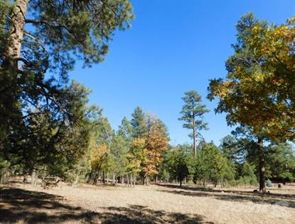 Single-Family Home for sale in 3896 Timberline Dr , Flagstaff, AZ, 86024