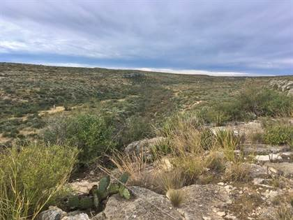 Lots And Land for sale in Hwy 90, Sanderson, TX, 79848