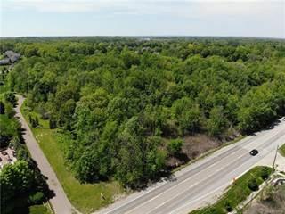 Land for sale in 0000 Beck Road, Novi, MI, 48374