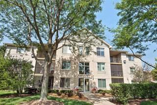 Condo for sale in 6850 Ridge Point Drive 1C, Oak Forest, IL, 60452
