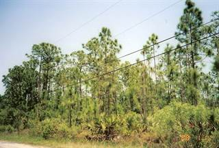 Land for Sale Malabar, FL - Vacant Lots for Sale in ...