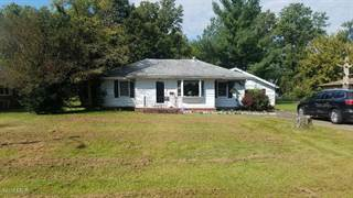 Single Family for sale in 221 Spence, Mounds, IL, 62964