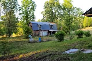 Single Family for sale in 153 Private Road 204-184, Alton, MO, 65606