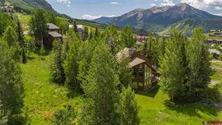 Single Family for sale in 34 Belleview Drive, Mt. Crested Butte, CO, 81225