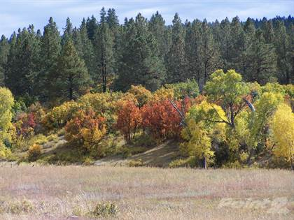 Lots And Land for sale in Parcel #10, Pagosa Springs, CO, 81147