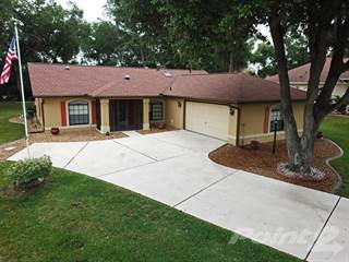 Residential Property for sale in 3387 E Chichester Court, Hernando, FL, 34442