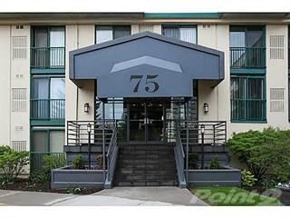 Residential Property for rent in 75 Ellen Street, Barrie, Ontario, L4N 7R6