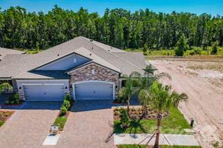Single Family for sale in 19373 Hawk Valley Drive, Tampa, FL, 33647