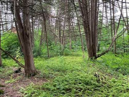 Vacant Land for sale in LOT 18 NORTHSIDE RD, Kawartha Lakes, Ontario, K9V4R5