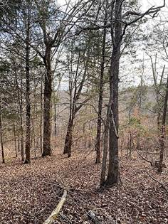 Farm And Agriculture for sale in 0 Holladay Rd., Parsons, TN, 38363