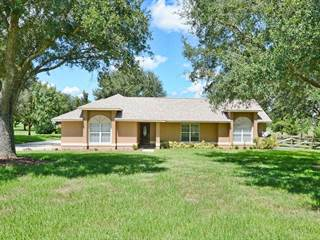 Single Family for sale in 22935 LYNX COURT, Sorrento, FL, 32776