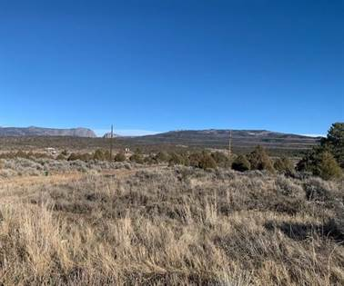 Lots And Land for sale in A-4 South Tract, Tierra Amarilla, NM, 87575