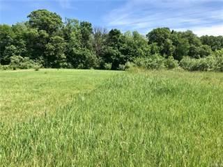 Land for sale in Parcel 2A PINCKNEY Road, Putnam, MI, 48169