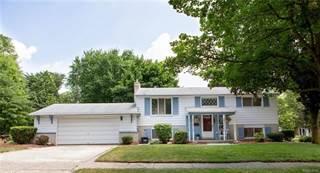 Single Family for sale in 986 NOVI Street, Northville, MI, 48167