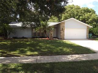 Single Family for sale in 605 HOLLOW RIDGE ROAD, Palm Harbor, FL, 34683