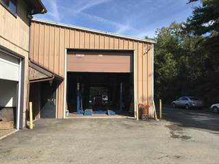 Comm/Ind for rent in 2379 Pa 209, Sciota, PA, 18354
