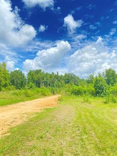 Lots And Land for sale in 0 Abraham, Magnolia, MS, 39652