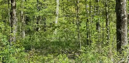Lots And Land for sale in 000 BLY HOLLOW RD, Berlin, NY, 12022