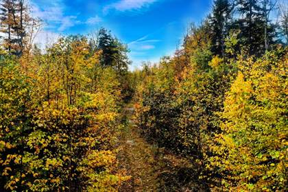 Lots And Land for sale in 00 Lemere Road, Unity, NH, 03743