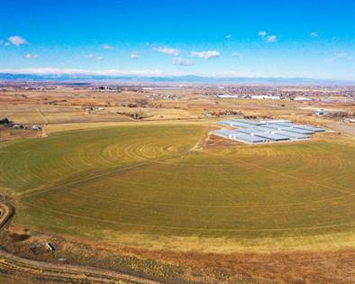 Farm And Agriculture for sale in 15000 Picadilly Rd., Brighton, CO, 80603